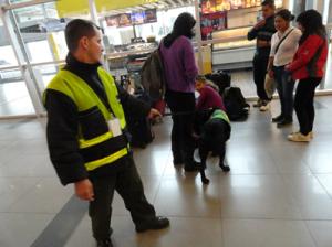 Cães sendo utilizados no lugar Raio X, Scanners ou Detectores de metal para revistar pessoas e malas.